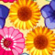 Photo puzzles: Flower Power