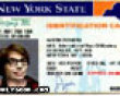 Funny pics mix: Austin powers' license picture