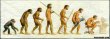 Funny pictures: Evolution of Man-1