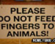 Funny pics mix: Feeding fingers to animals