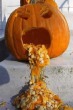 Funny pictures : Sick pumpkin