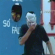 Funny videos : Pie in the face