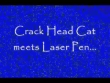 Funny videos : Laser pen plus cat