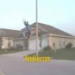 Funny videos : Jump, jump, jump, jump around