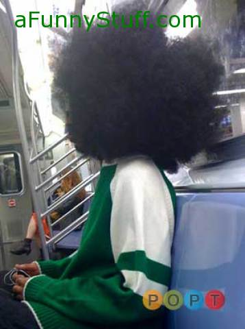 Funny pictures : HUGE Afro | People of Public Transit