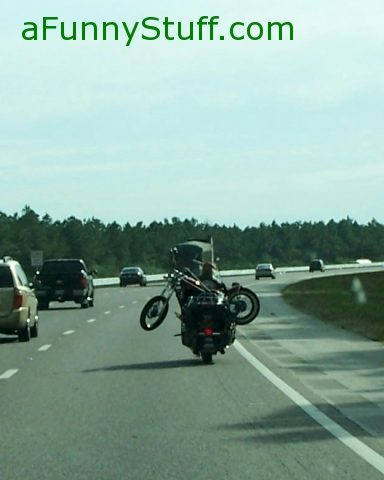 Funny pictures : Harley Transport