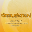 Strategy games : Citrusation