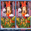Photo puzzles : Mickey Spot the Difference
