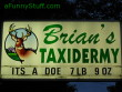 Funny pictures : Taxidermery sign board