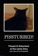 Funny pictures : Pissturbed